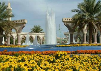 Full-Day Tour to Al Ain with Lunch from Dubai