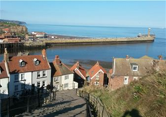 The North York Moors and Whitby Tour from York
