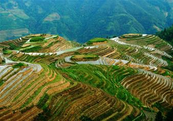 Minority Village Tour and Longji Rice Terraces in Guilin