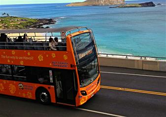 Waikiki Trolley Hop-on Hop-off Bus Tour - 1 Day Two Line Pass - Cultural Honolulu & Shopping Shuttle