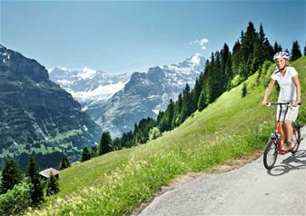 Grindelwald and Interlaken Day Tour from Lucerne
