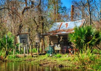 Plantation Combo, Brunch and Cajun Swamp Experience Tour from New Orleans
