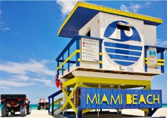Everglades and Miami Adventure Tour from Orlando