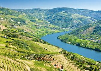 "Full Day Guided Wine Tour to ""Douro Valley"" from Porto"