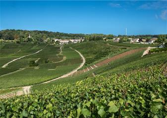 Grande Maison de Champagne with Comfort Overnight Stay in 4-star Hotel de la Paix in Reims
