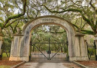 Historic Wormsloe Plantation and Isle of Hope Tour