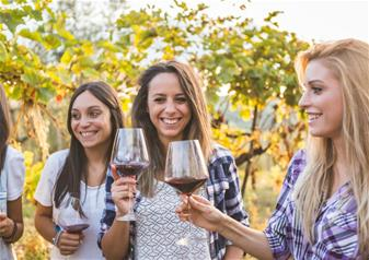 Half-Day Amarone Wine & Food Route in a Small Group