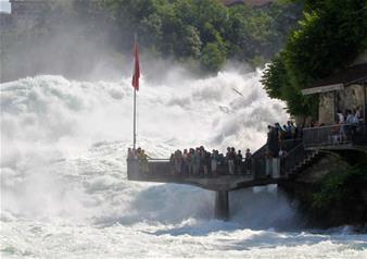 Rhine Falls and Stein am Rhein Half-Day Tour from Zurich