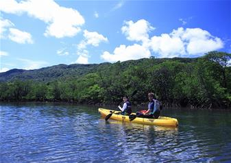 Half Day Iriomote Kayaking and Sangara Falls Trekking Tour including Lunch