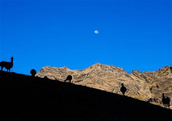 Private tour of Lares Trek to Machu Picchu with Hotel Pick-up – 3 Nights and 4 Days Package